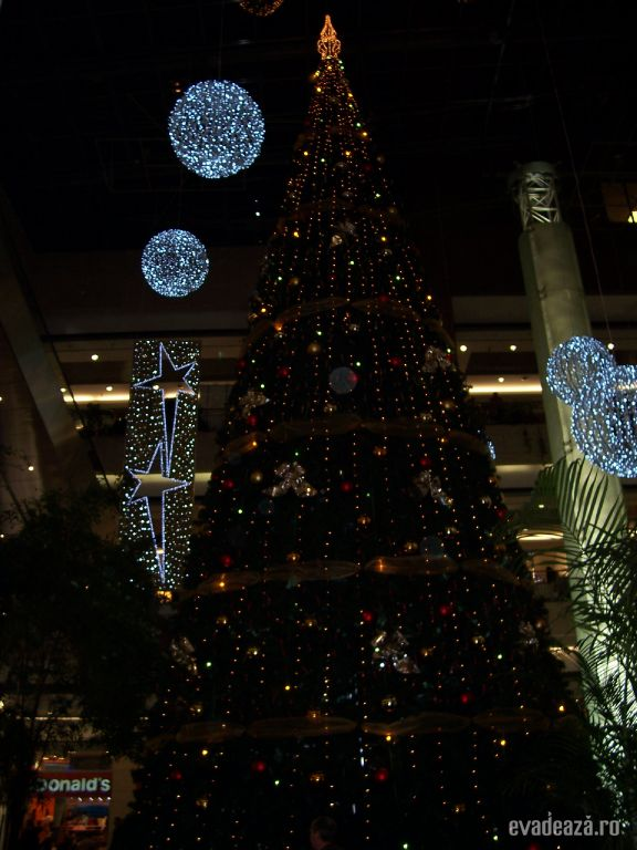 Shopping la Westend City Center | 1
