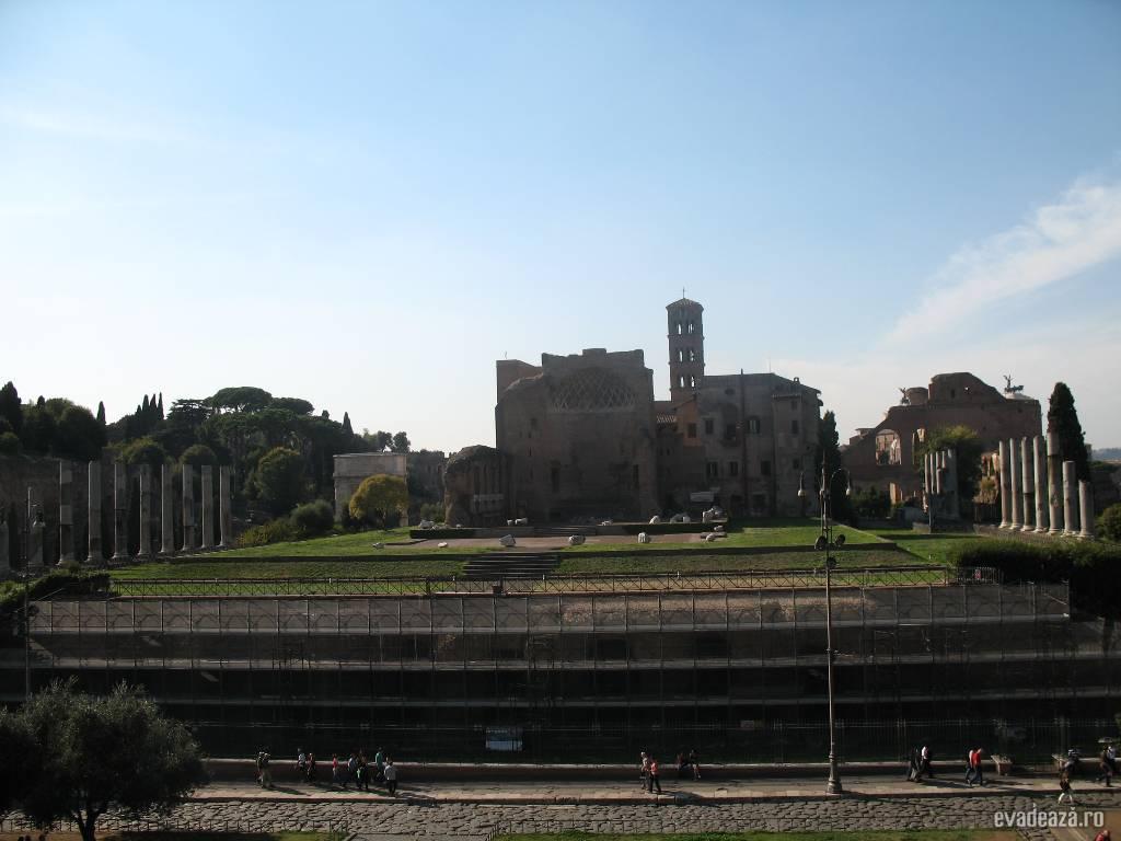 Colosseum Roma   5