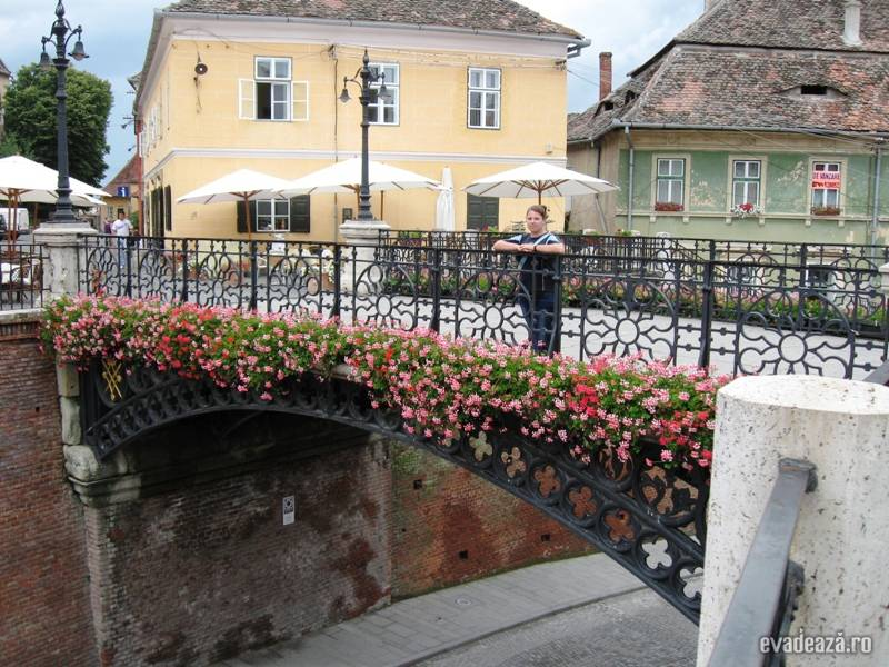 Curtea de Arges-Transfagarasan-Sibiu | 6