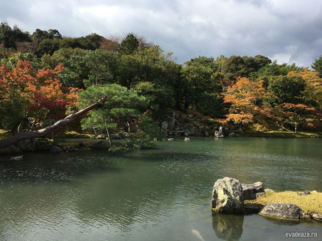 Zen @ Kyoto