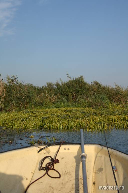 Delta Dunarii - Crisan   1