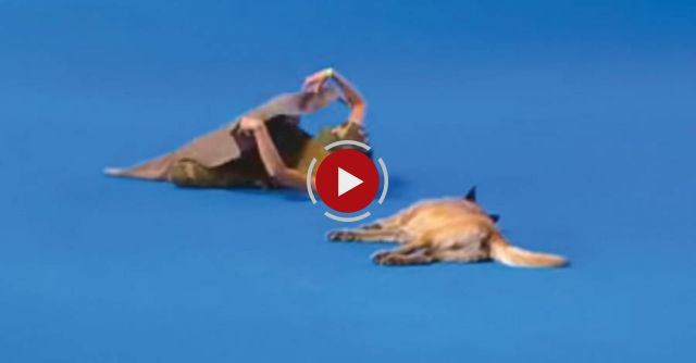 She lies down next to her dog - when the music starts the real show begins!